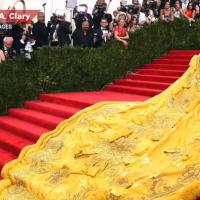 5 Reasons Rihanna's Fox Fur Dress should Still Bother Us.
