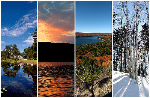 seasons nature change impermanence