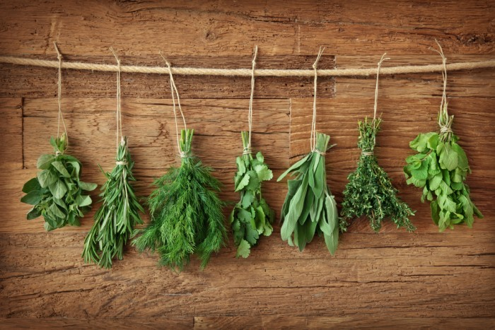 Herbs drying.jpg