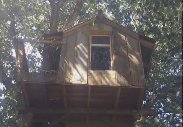Hotelephant-treehouse