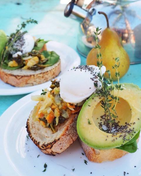avocado sourkraut