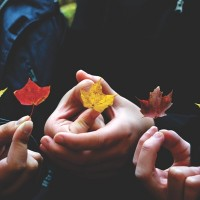 Lessons of the Leaves: For My Son in Deep Autumn.