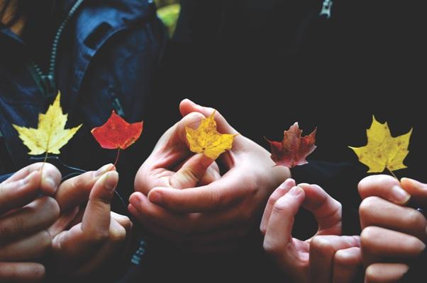 leaves fall autumn children