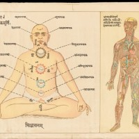 Yoga Snobbery: To Sanskrit or Not to Sanskrit?