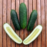 The Taoist Cucumber Yoni Massage. {Bonus: Pema Chodron on Maitri.}