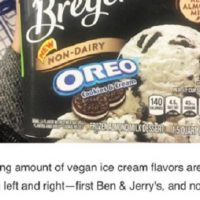 This Ice Cream Giant just Released its first Vegan Flavor.