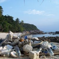 The Good Thing about Marine Debris.