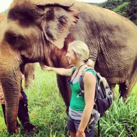 What a Herd of Elephants Taught me about Blended Families.