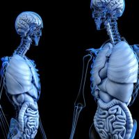 Most Arthritis & Osteoporosis is Preventable & Curable---and has been since 1968.