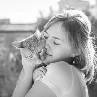 Cats are Empaths: The Power of the Purr.