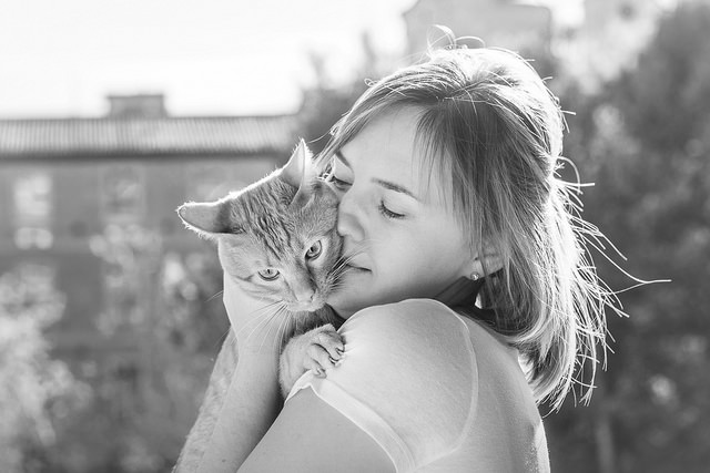 Cats are Empaths: The Power of the Purr  | elephant journal