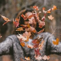 Autumn: Showing us the Beauty of Letting Go.