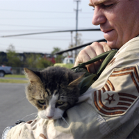Stepping Up for Animals when Disaster Strikes.