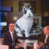 John Oliver has no Beef with BOTUS: Bunny of the United States.