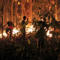 Burning Season: A Crisis in (not only) Northern Thailand.