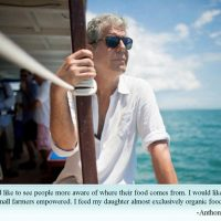 """""""Parts we wished we had Known"""" about Anthony Bourdain & Suicide."""