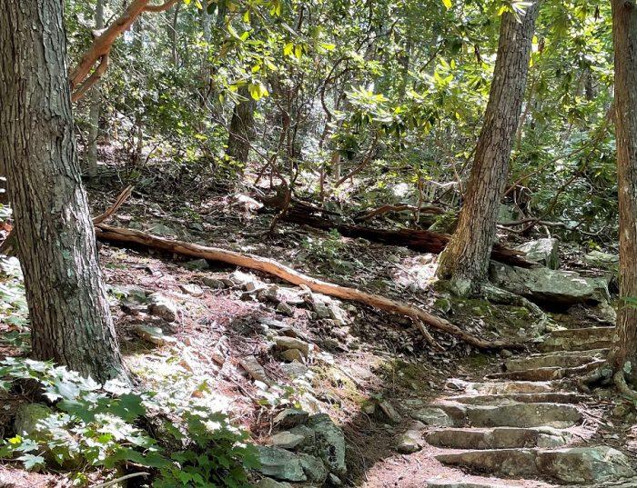 hike happiness
