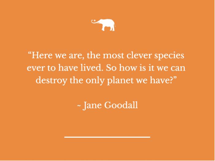 jane goodall climate change